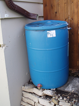 A simple rain barrel with intake from a downspout (top), a drainage spout (bottom), and an overflow spout (side). Note that a hose should be attached to the overflow spout to drain water away from the house foundation.